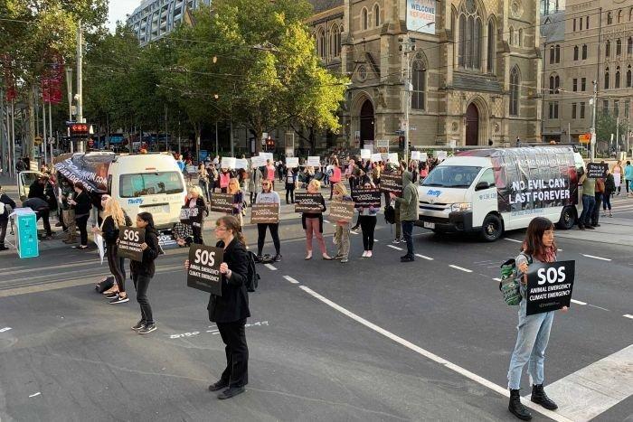 Photo: ABC Melbourne Twitter