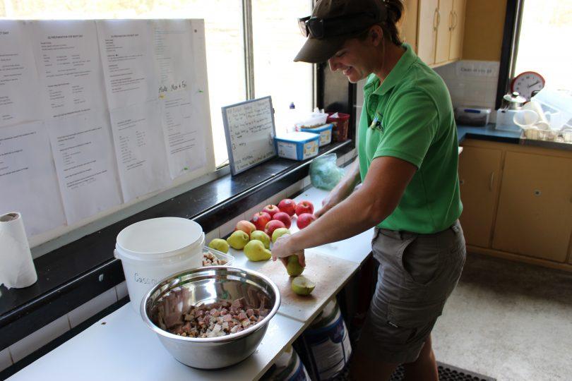 Alex Metcalfe preparing the Cassowary's feed. Photo: Ian Campbell.