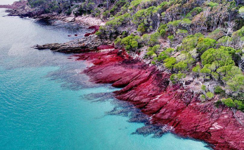 The vibrant colours of Ben Boyd National Park. Photo: Light 2 Light Coastal Walks.