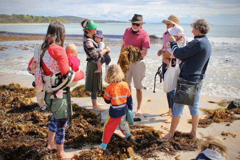 Seaweed workshop