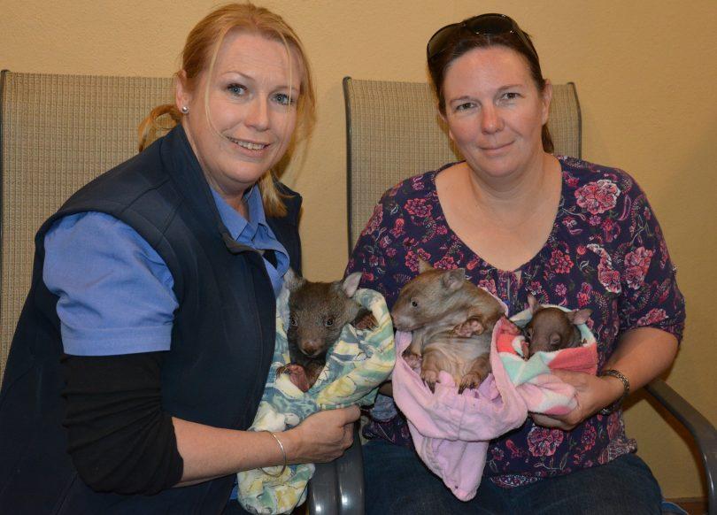 Wildlife carers Kelly McMahon and Jenny Williams