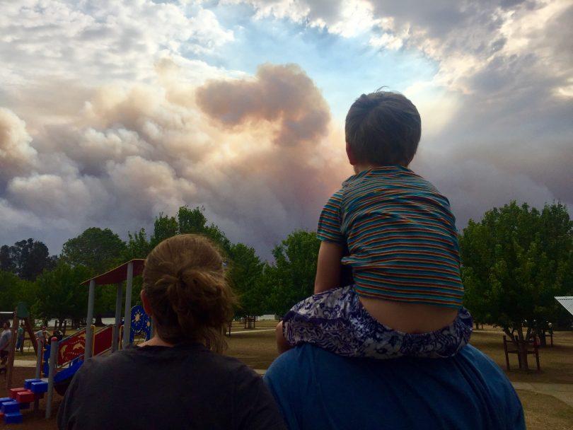 Moruya bushfires
