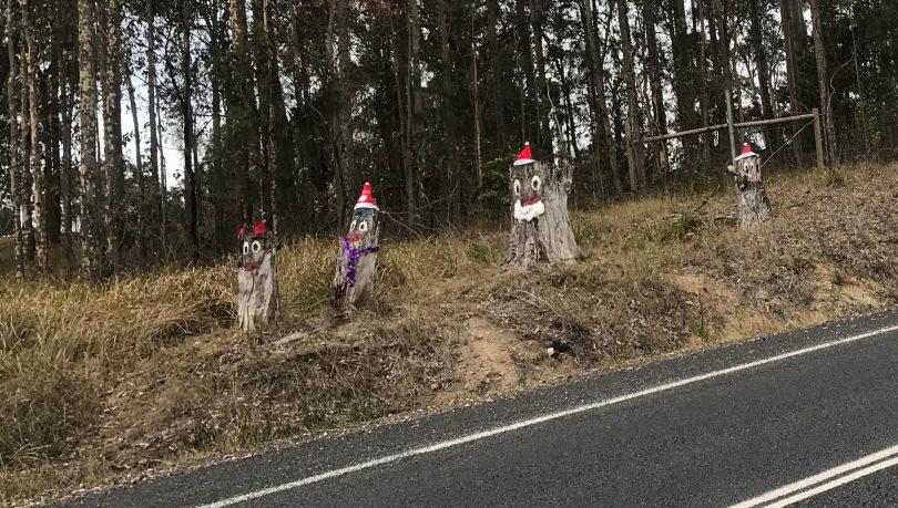 Stumpy Family in the Christmas spirit