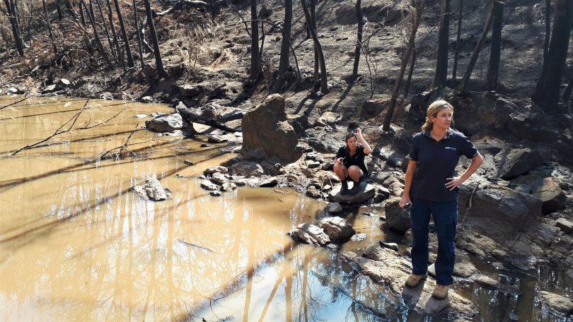 Eurobodalla Council's Landcare coordinator Emma Patyus and natural resources supervisor Heidi Thomson along the burnt-out bank of the Deua River.