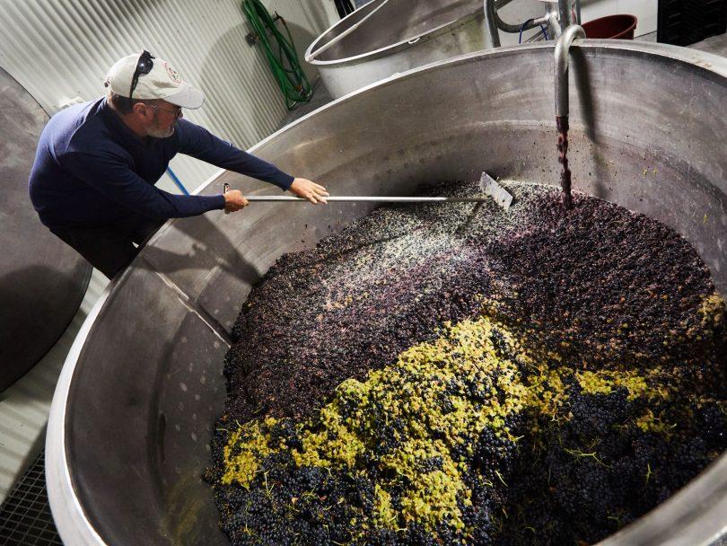Tim Kirk stirring vat of grapes.