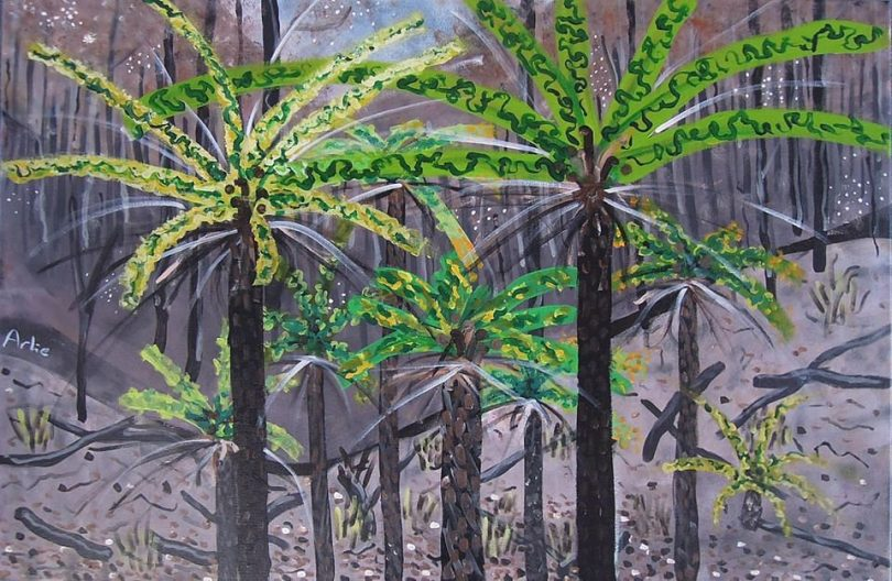 An artwork of tree ferns of the Towamba Valley.