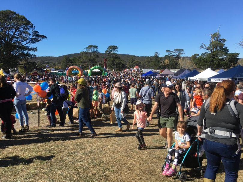 2018 Collector Pumpkin Festival