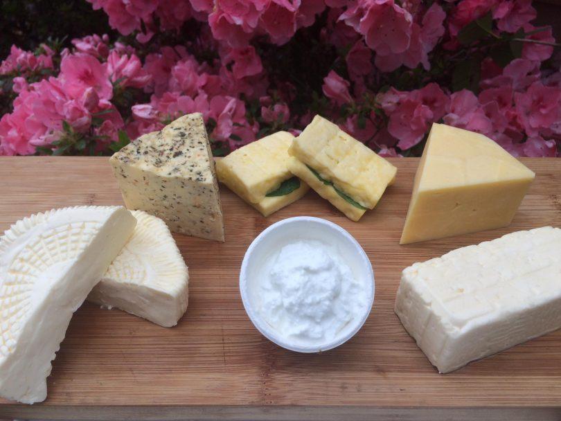 Selection of Niagara Lane cheeses.