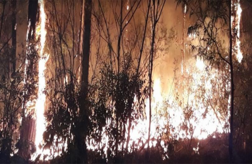 Bushfire at Malua Bay.