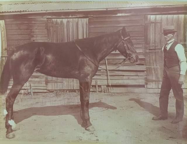 Harold Hewitt standing with his horse, Chips.