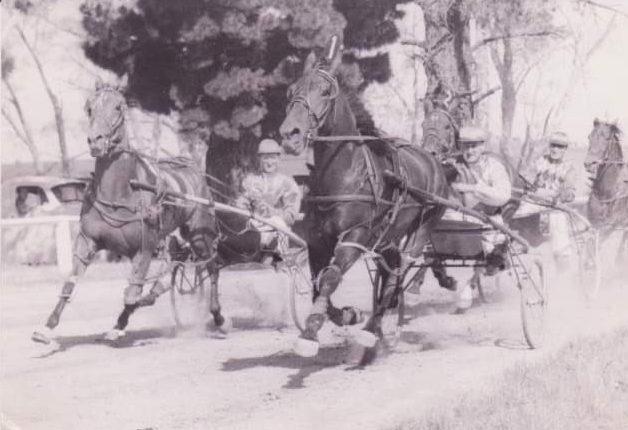 Historical photo of Thomas Hewitt and Goff Hewitt harness racing.