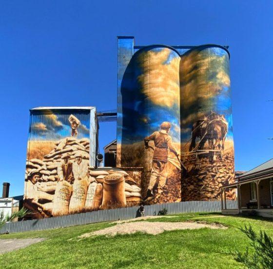 Artist Heesco standing in front of silo mural in Harden-Murrumburrah.