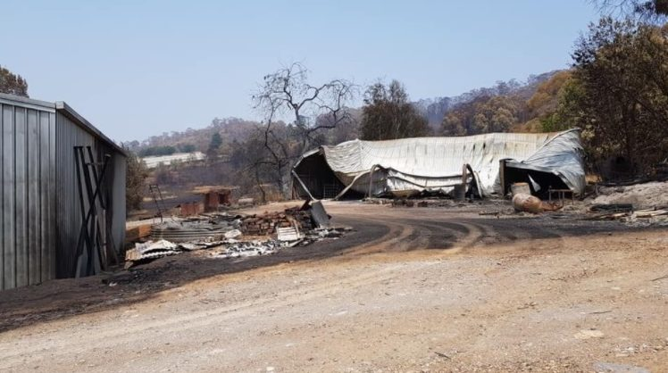 Bushfire-damaged shed at Wilgro Orchards