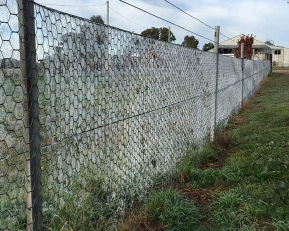 Spider webs on fence at Bigga rural property