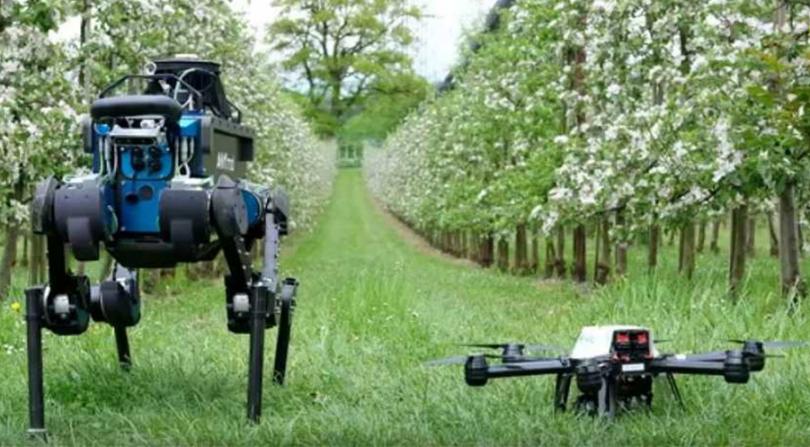 Farming robotics and artificial intelligence