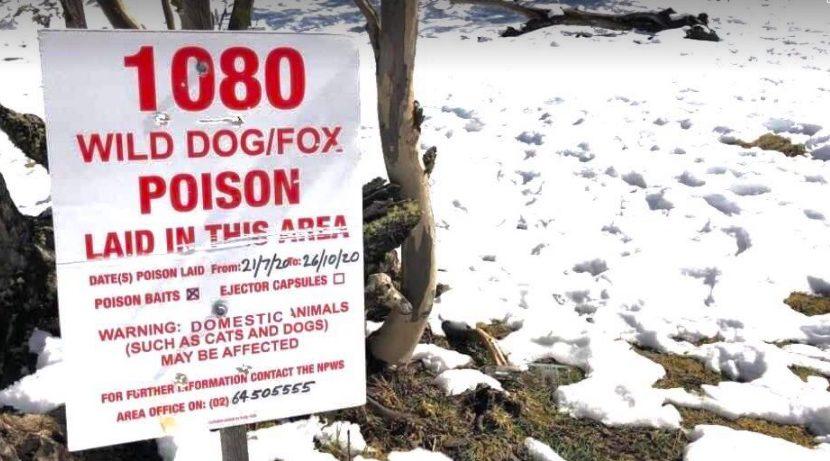 Sign warning of wild dog/fox baiting in Kosciuszko National Park