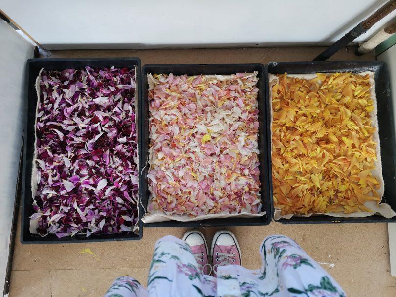 Dried edible flowers