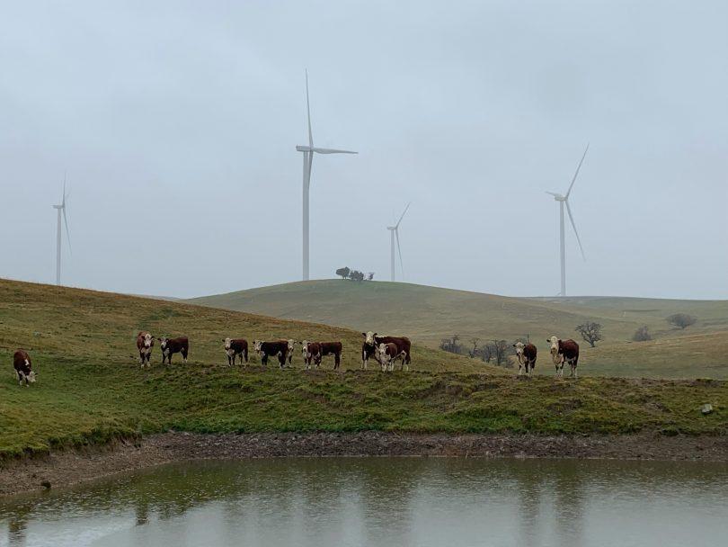 Crookwell 2 Wind Farm